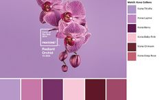 Radiant Orchid, Pantone Color of the Year 2014