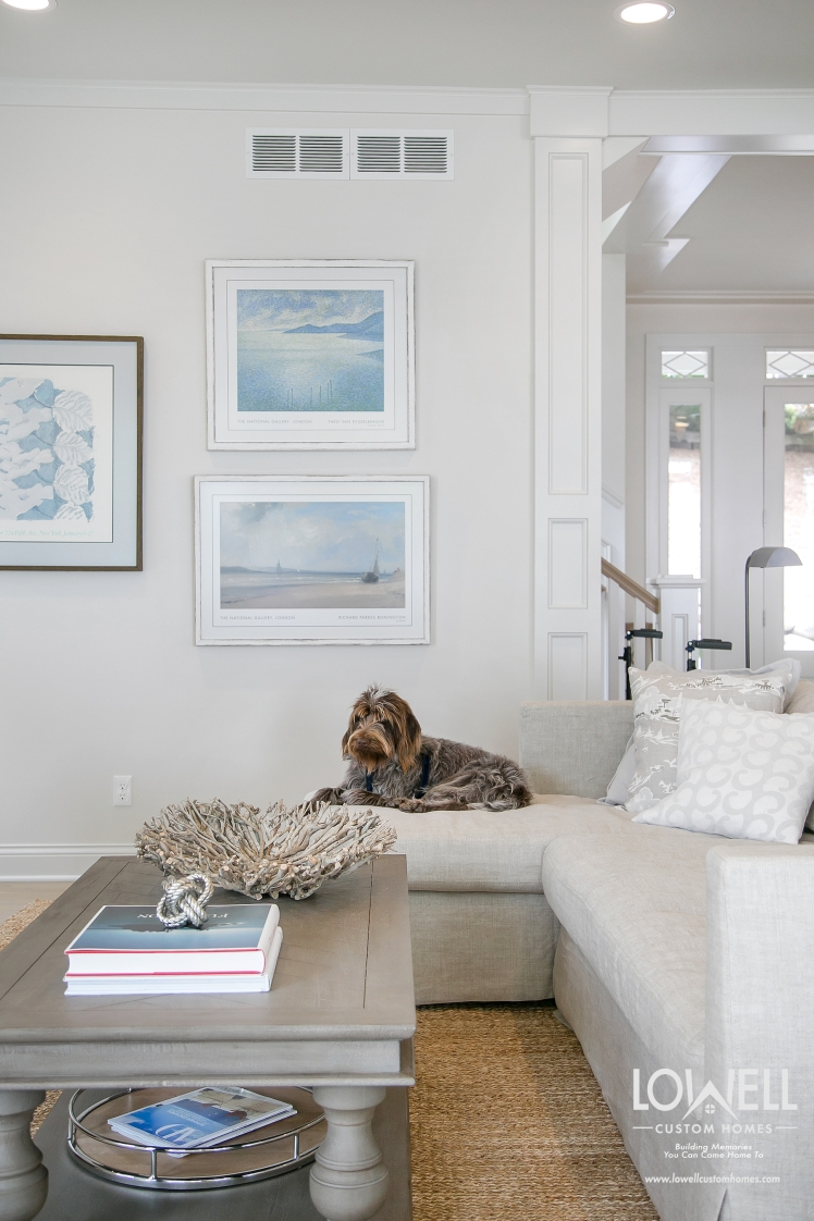 Harmony at home Gussie pet fits perfectly into home design scheme